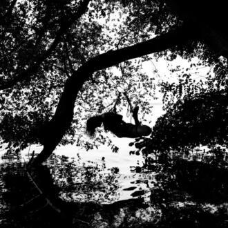 Aktfotografie | Shibari am Müggelsee