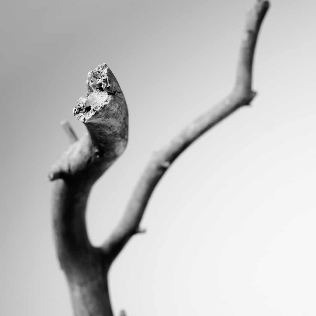Kunstfotografie Fine Art Photography 0008