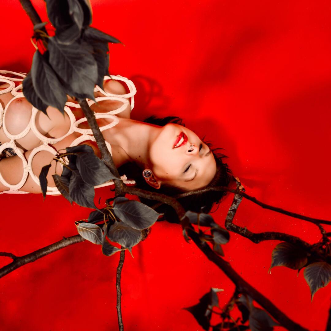 Herbst Rot – Aktfotografie / Fine-Art Nude 4